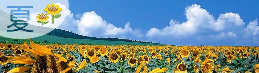 滝沢市社会福祉協議会ホームページへようこそ